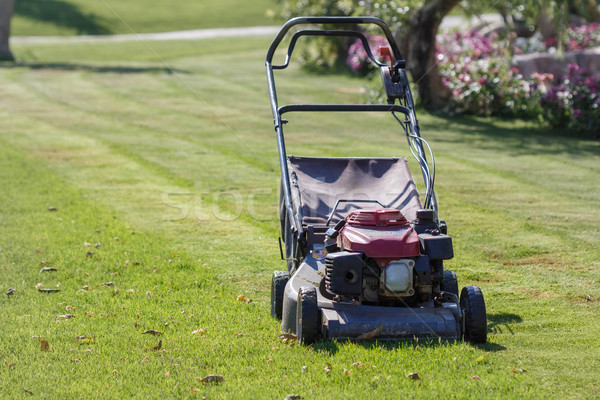 Modern gasoline lawn mower Stock photo © Supertrooper