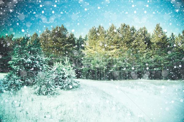 Winter landscape Stock photo © Supertrooper
