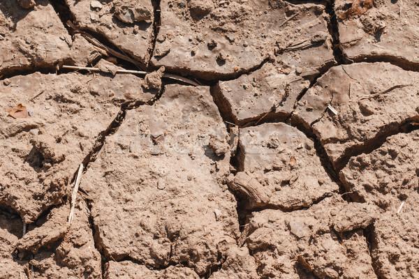 土壌 クローズアップ 亀裂 シーズン ストックフォト © Supertrooper