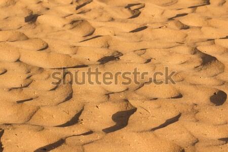Desert sand texture Stock photo © Supertrooper