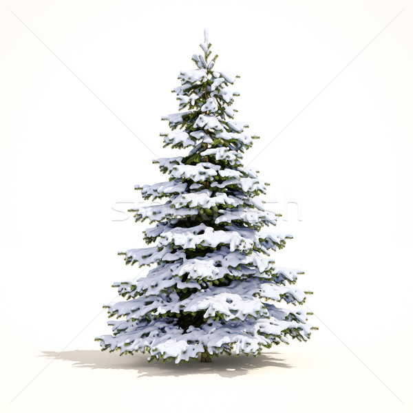 White Christmas Snow Tree Stock photo © Supertrooper