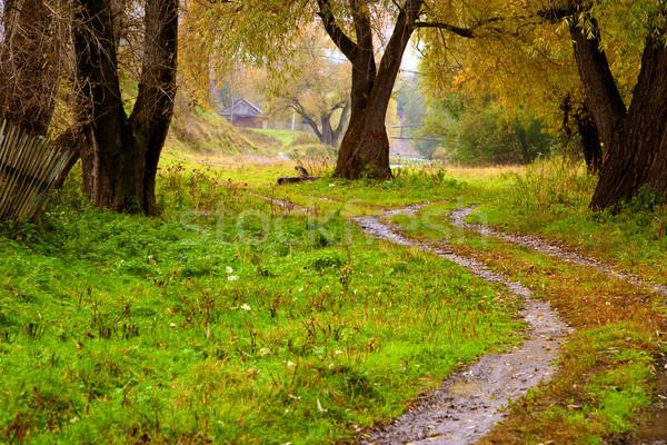 Autumn landscape Stock photo © Supertrooper