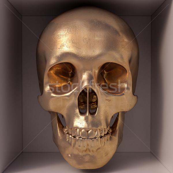 Golden skull Stock photo © Supertrooper