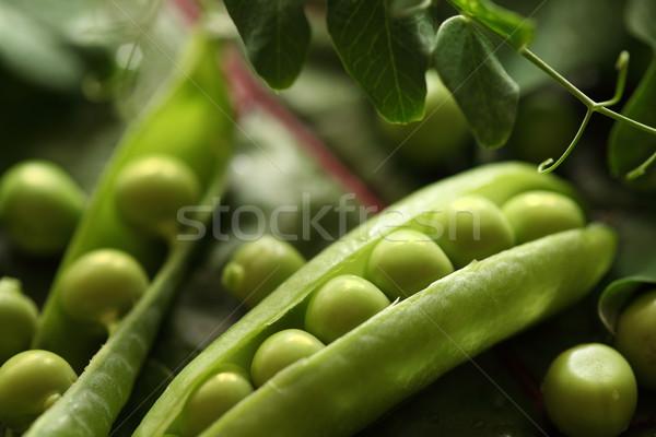 Verde fresco naturalismo tiroteio verão Foto stock © Supertrooper