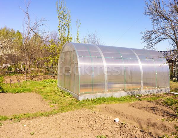 Modernes effet de serre croissant légumes usine Photo stock © Supertrooper