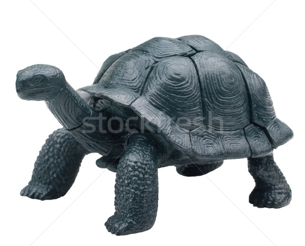 Realistic toy turtle isolated Stock photo © Supertrooper