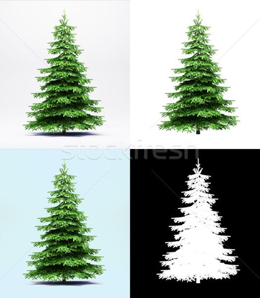 Enfeitar árvore isolado 3d render diferente fundos Foto stock © Supertrooper