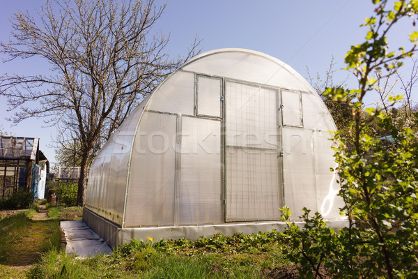 Greenhouse Stock photo © Supertrooper