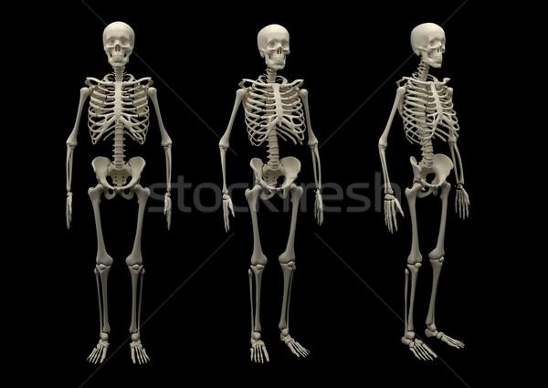 Stock fotó: Csontváz · izolált · felnőtt · fekete · gyógyszer · tárgy