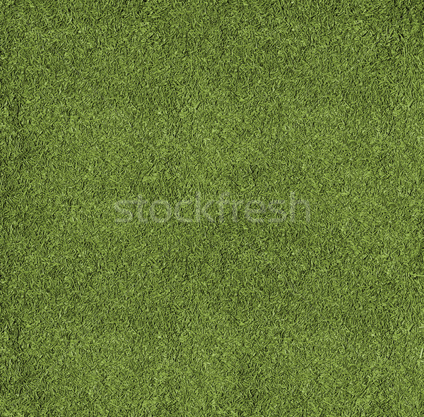Texture football pitch Stock photo © Supertrooper