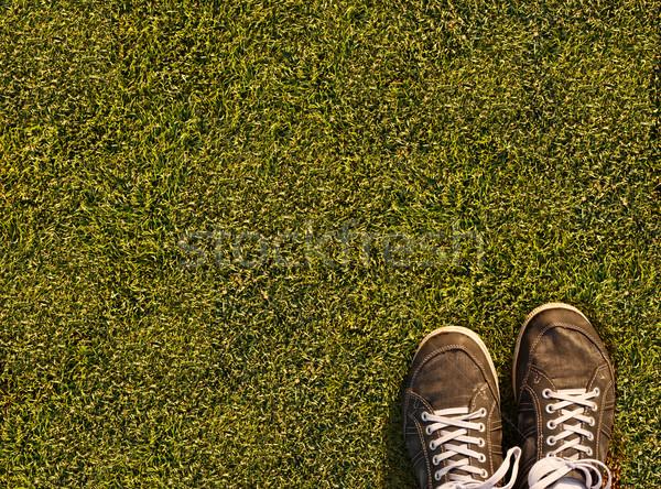Foto stock: Campo · de · grama · grama · verde · textura · campo · de · futebol · grama · esportes