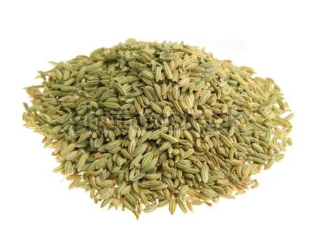 Fenchel (fennel) isolated Stock photo © Supertrooper