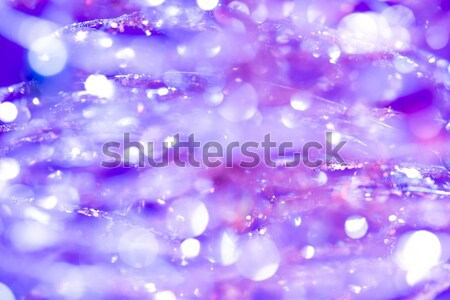 Abstract background of Christmas tree lights Stock photo © Supertrooper