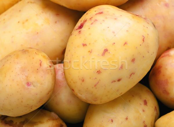Potato close up Stock photo © Supertrooper