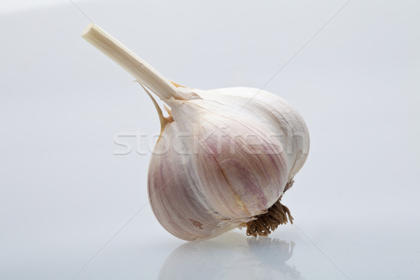 Clove garlic Stock photo © Supertrooper