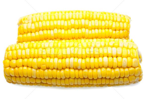 Corn-cob isolated Stock photo © Supertrooper