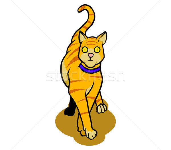 Cat Stock photo © superzizie