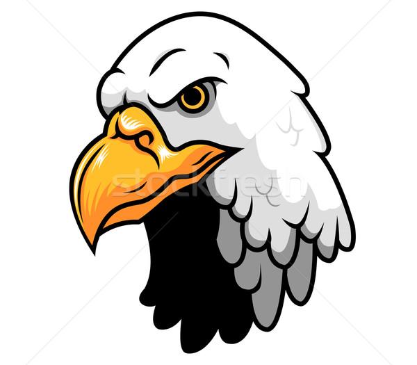Stock photo: Bald Eagle Head