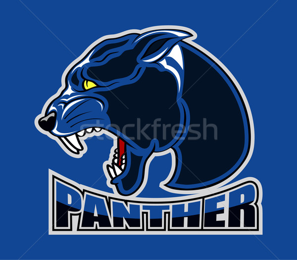 Panthère logo illustration noir tête icône Photo stock © superzizie