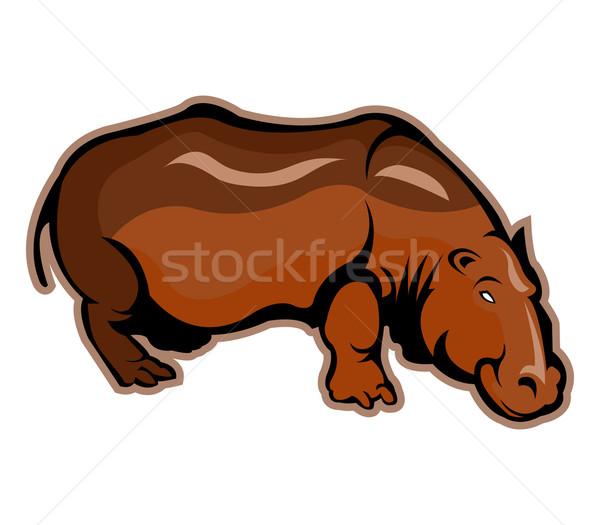 Hippopotamus Stock photo © superzizie