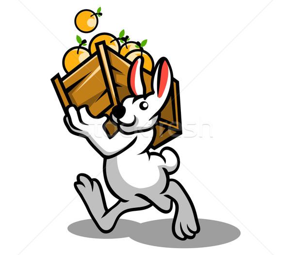 Konijn oranje vruchten witte blad oranje leuk Stockfoto © superzizie