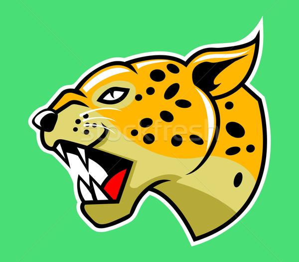 Leopard Head Stock photo © superzizie