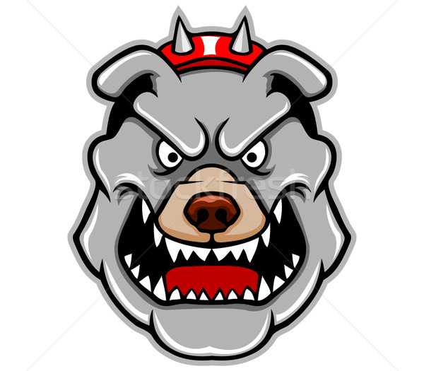 Pitbull fej bika kabala Stock fotó © superzizie