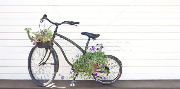 Eski siyah bisiklet çiçekler çim duvar Stok fotoğraf © Suriyaphoto