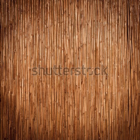 Bois mur texture arbre construction fond Photo stock © Suriyaphoto