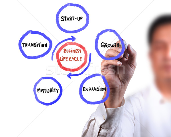Business man drawing business life cycle diagram Stock photo © Suriyaphoto
