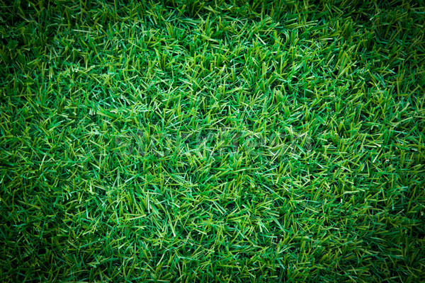Herbe artificielle feuille texture printemps jardin fond Photo stock © Suriyaphoto