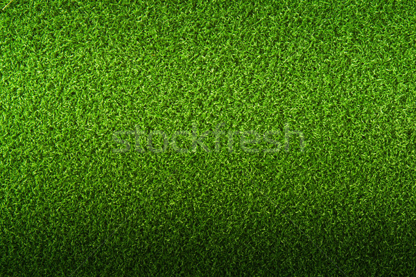 Herbe verte herbe sport paysage football domaine Photo stock © Suriyaphoto