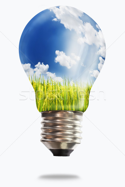 light bulb with paddy rice Stock photo © Suriyaphoto