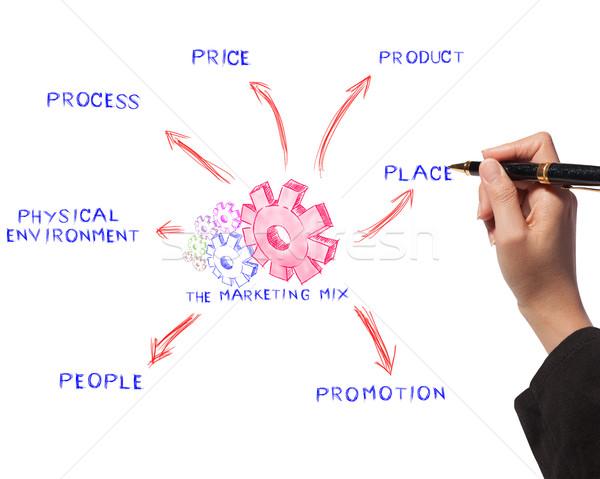 Nő rajz marketing keverék ötlet tábla Stock fotó © Suriyaphoto