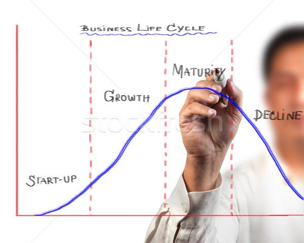 Photo stock: Homme · d'affaires · dessin · affaires · vie · cycle · diagramme