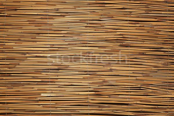 Bambu doku duvar büro zemin renk Stok fotoğraf © Suriyaphoto