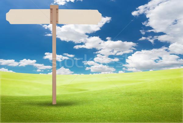 Foto stock: Assinar · verde · campo · blue · sky · primavera · grama