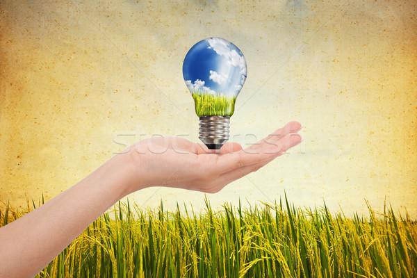 Eller global yeşil enerji çözümler ampul Stok fotoğraf © Suriyaphoto