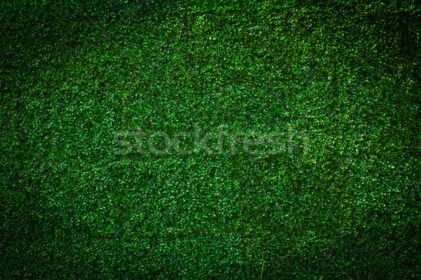 Artificial Grass leaf background Stock photo © Suriyaphoto