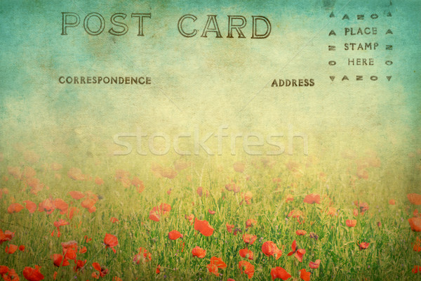 grunge landscape postcard  Stock photo © susabell