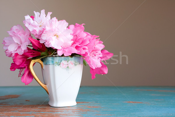 teacup with azalea flowers Stock photo © susabell