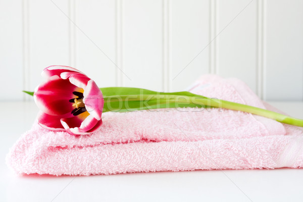 Pink tulip on towel  Stock photo © susabell