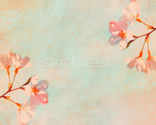 Grungy floral background Stock photo © susabell