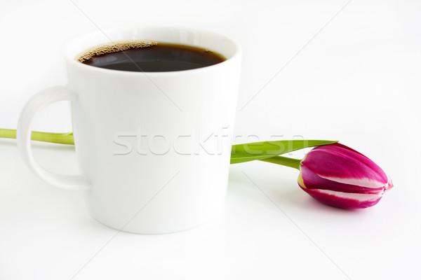 Kahve fincanı çiçek içmek lâle kahvaltı fincan Stok fotoğraf © susabell