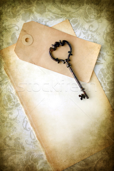 Old skeleton key and blank paper  Stock photo © susabell