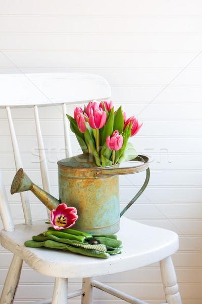 Fiori annaffiatoio sedia fiore interni Foto d'archivio © susabell