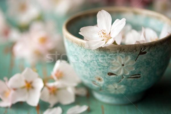 Geen beschrijving bloem tabel kers schotel Stockfoto © susabell