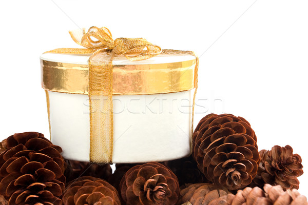 Holiday Gift Stock photo © susabell