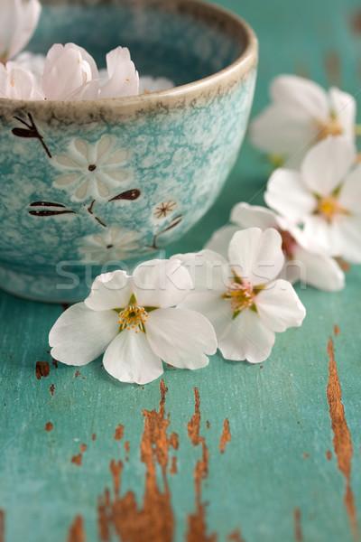 Fleur table cerise plat fleur Photo stock © susabell