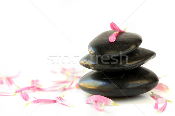 spa stones and flower petals  Stock photo © susabell